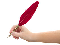 Hand holding feather pen Stock Photos