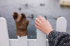 Hand holding fence with glove Royalty Free Stock Photo