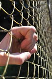 Hand holding fence Royalty Free Stock Images