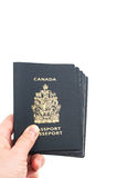 Hand holding five Canadian passports Stock Image