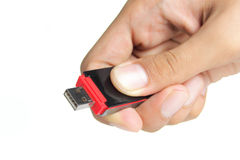 Hand holding a flash disk Stock Photo