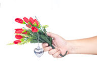 Hand holding a flower Royalty Free Stock Image