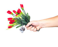 Hand holding a flower Stock Photography