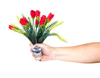 Hand holding a flower Stock Photo