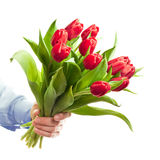 Hand holding flowers Royalty Free Stock Image
