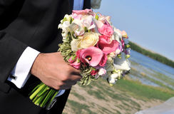 Hand holding flowers Stock Images
