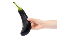 Hand holding fresh eggplant isolated on white background Stock Image