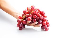 Hand holding fresh red bunch of grapes isolated on white background. Hand holding fresh red bunch of grapes isolated on white background royalty free stock images