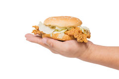 Hand holding a fried chicken burger isolate on white Stock Photos