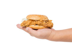 Hand holding a fried chicken burger isolate on white Stock Photography