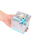 Hand holding gift in white and blue package Royalty Free Stock Photography