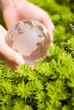Hand holding a glass globe Royalty Free Stock Photography