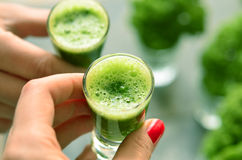 Hand holding a glass with kale coctail. Feminine hand holding a little glass with green kale coctail, in the background kale leafs in the glasses Royalty Free Stock Photography