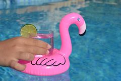 Floating drinks holder in a swimming pool stock photo