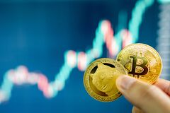 Free Hand Holding Gold Bitcoin And Dogecoin Stock Image - 217909521