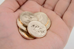 Hand Holding Gold Coins. Hand Holding Gold Dollar Coins Royalty Free Stock Photo