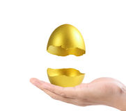 Hand Holding  golden eggs Royalty Free Stock Photo