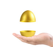 Hand Holding  golden eggs Royalty Free Stock Images