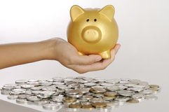 Hand Holding Golden Piggy Bank Royalty Free Stock Images