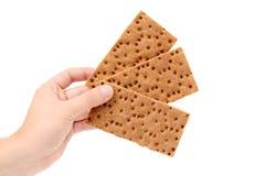 Hand holding grain crisp bread. Stock Image