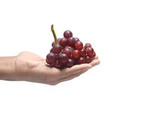 Hand holding grapes isolated Royalty Free Stock Photo