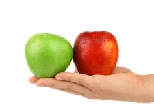 Free Hand Holding Green And Red Apples Stock Images - 34420564