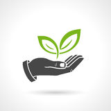 Hand Holding Green Leaves Ecology Vector Symbol Stock Photos