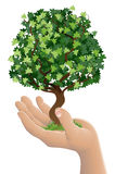 Hand holding a growing tree Stock Images