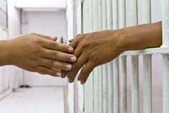 Free Hand Holding Hand. Stock Image - 32372151
