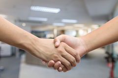 Hand holding hand  over white background Stock Images
