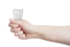 Hand holding handful of nails. Isolated on white Royalty Free Stock Photography
