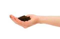 Hand holding handful of soil Royalty Free Stock Photography