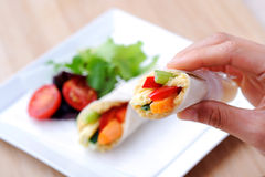 Hand holding a healthy snack wrap with carrot, capsicum and a si Royalty Free Stock Photo