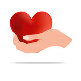 Hand holding a heart Stock Images