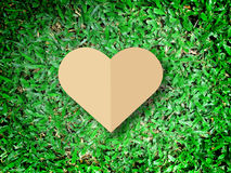 Hand holding heart love the nature symbol Grass background Royalty Free Stock Image