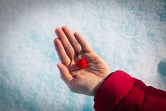 Hand holding heart in winter nature, giving love,. Valentine concept royalty free stock image