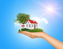 Hand holding house on green grass with red roof Royalty Free Stock Images
