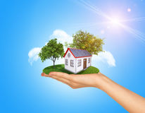 Hand holding house on green grass with tree, solar Stock Photography