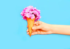 Hand holding ice cream cone with flowers over blue Royalty Free Stock Photos
