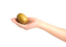 Hand holding kiwi fruit on white background Royalty Free Stock Photography