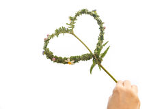 Hand holding Knitted heart with leaves handmade Stock Photography