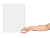 A hand holding a large blank sheet of paper Stock Photos
