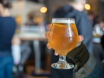 Hand holding a light beer snifter in bar/brewery. Close shot of a hand holding light beer snifter IPA in bar/brewery Royalty Free Stock Photography