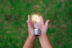Hand holding a light bulb. Hand holding a light bulb with energy Stock Photo