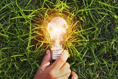 Hand holding light bulb on grass. eco concept power energy in na. Ture Royalty Free Stock Photos