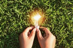 Hand holding light bulb on grass with sunset. concept solar ener. Gy in nature Royalty Free Stock Image