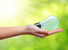 Hand holding light bulb Royalty Free Stock Images