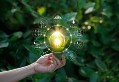 Hand holding light bulb on green nature with icons. Hand holding light bulb against nature on green leaves with icons energy sources for renewable, sustainable Royalty Free Stock Photos