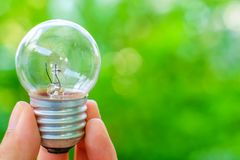 Hand holding a light bulb on natural green background royalty free stock images