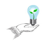 Hand holding light bulb with plant vector illustration